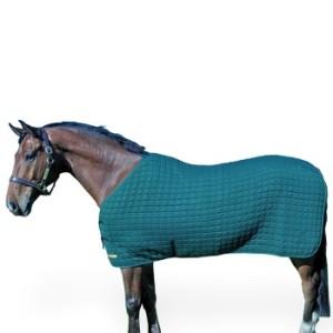 shr-green-thermatex-rug-350
